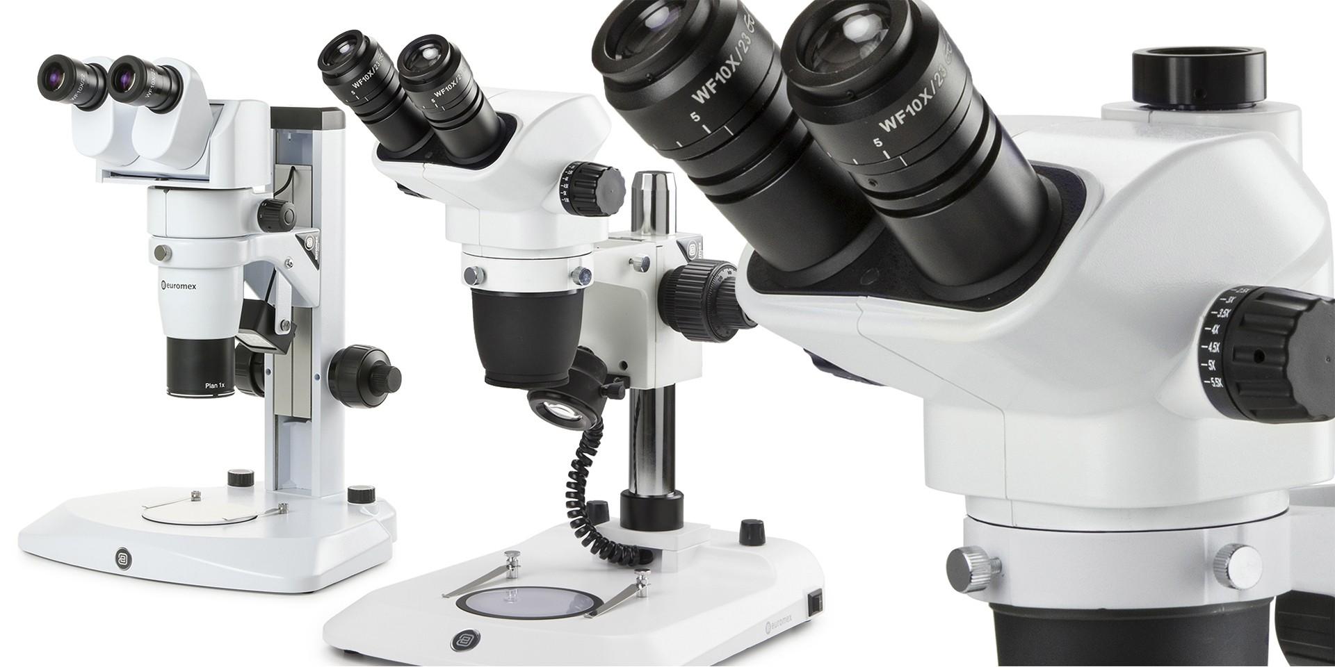 microscopios estereoscopicos, estereomicroscopios,euromex,