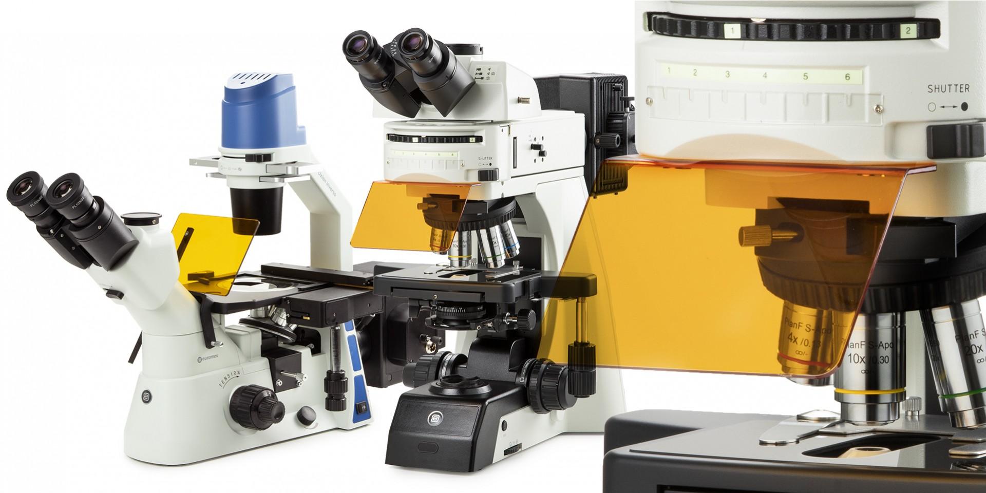 microscopios de epiflurescencia,microscopios de fluorescencia,euromex,